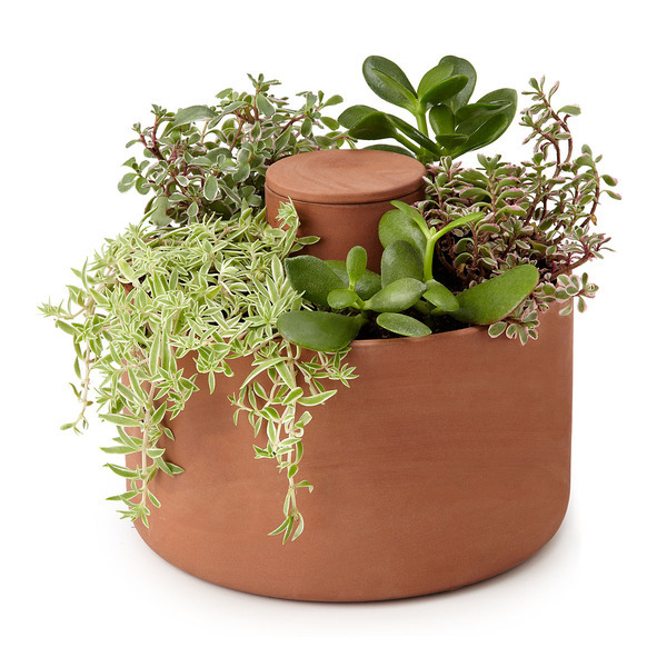 Terracotta Self Watering Planter